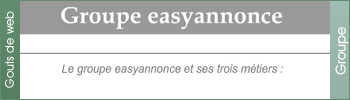Groupe Easyannonce